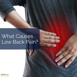 What Causes Low Back Pain (a)